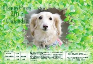 卓上_post_01_表紙_