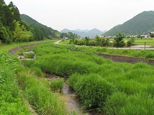 西脇 畑谷川