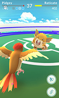 pokemon-go-gym-battle-better-422x750.jpg