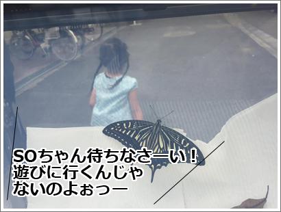 20160709-2.jpg