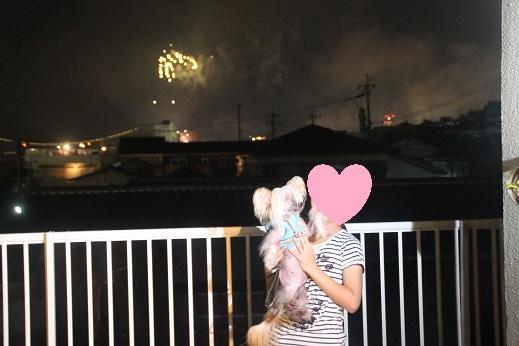 海峡花火 2016-8-13-12