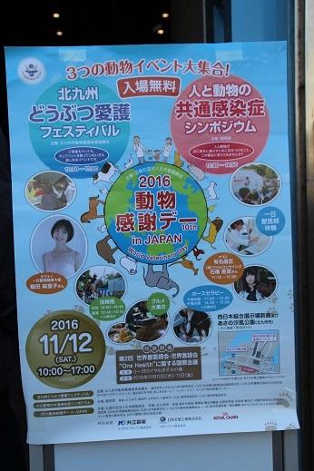 愛護フェスティバル1 2016-11-12-1