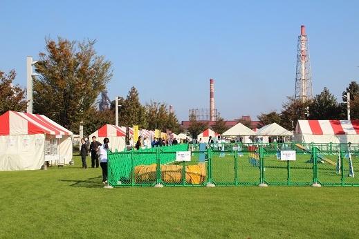 愛護フェスティバル1 2016-11-12-4