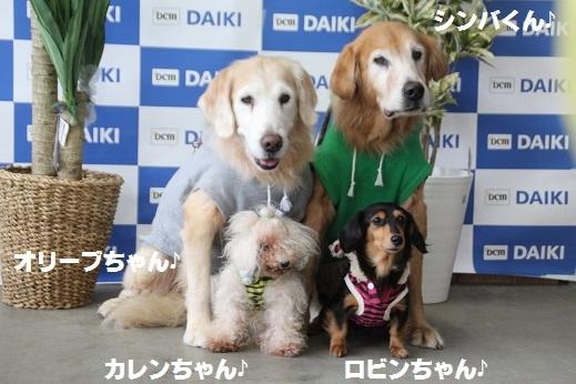 ダイキ下関 2016-11-27-4