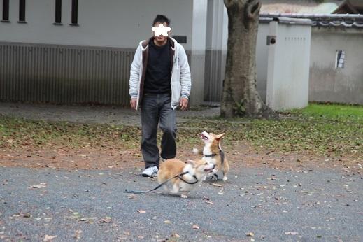 小倉城2 2016-12-12-5
