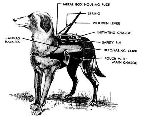 fig_anti tank dog_outfit