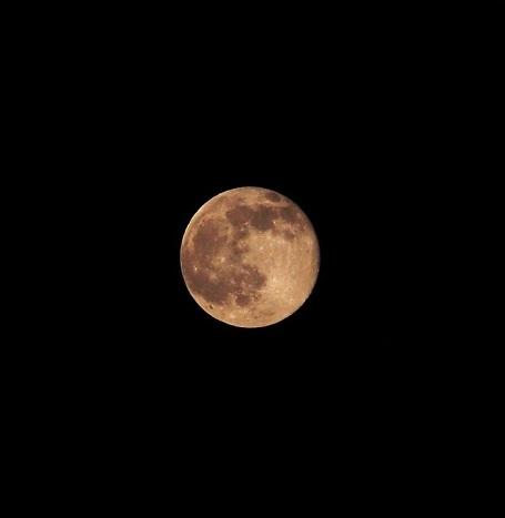 P5220575 今宵の月