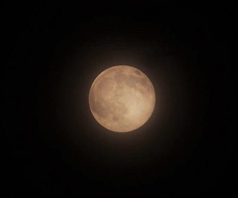 P6200594 6月の満月