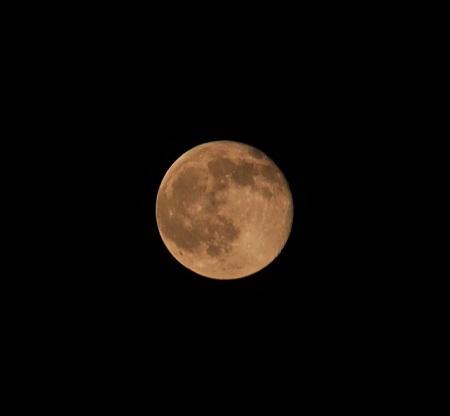 P6210592 今日の月