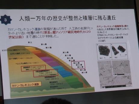 P7310599 カマンカルホユック遺跡