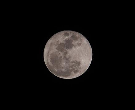 PC140585 。八潮からの今宵の月です