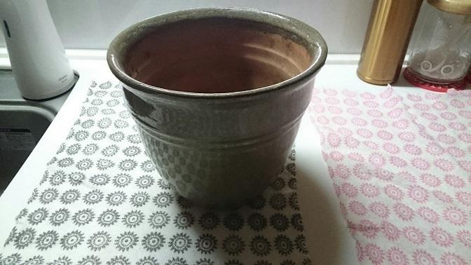 松2号新鉢