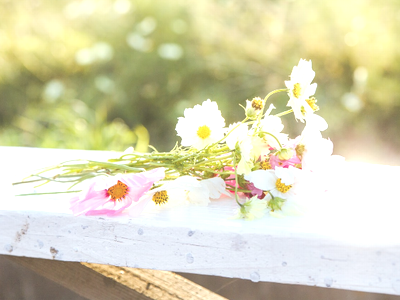 フリー素材 PAKUTASO 花束