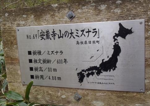 4月例会(安蔵寺山縦走) 019-001