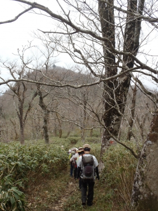 4月例会(安蔵寺山縦走) 035