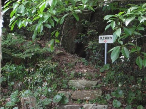 島ノ星山浅利富士 1 005