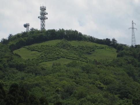 島ノ星山浅利富士 1 016