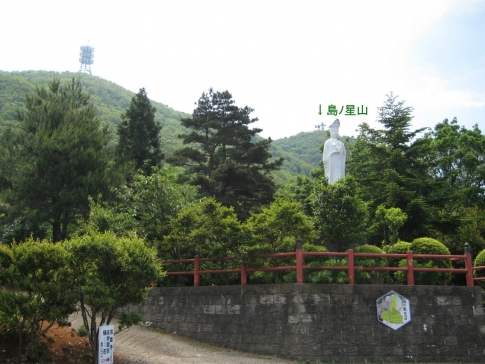島ノ星山浅利富士 1 001-001
