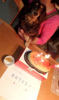 belleの15才お誕生日 008-002