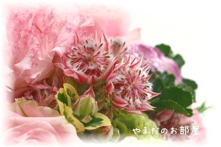 2016年 タロウの命日のお花④