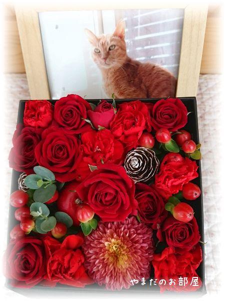 2016年 ボムボム命日のお花