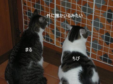 カムイ0015
