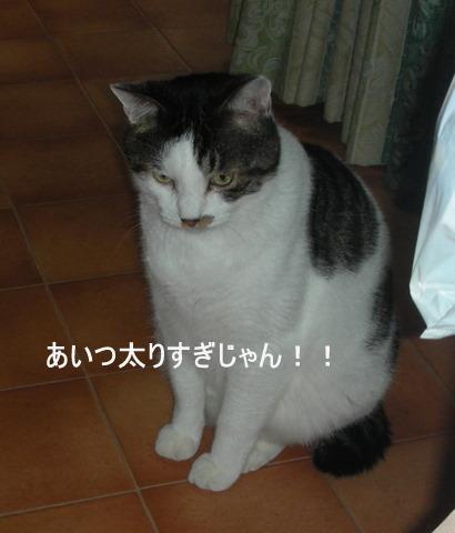 カムイ0139