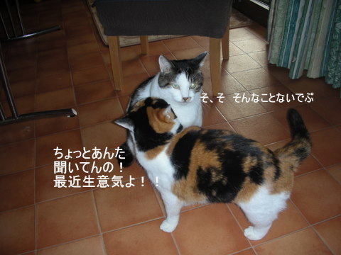 りん&ラスク0062