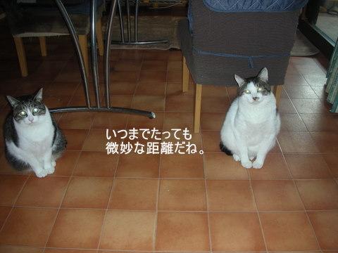 りん&ラスク0085