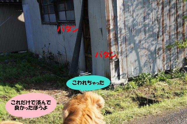 DSC01282.jpg