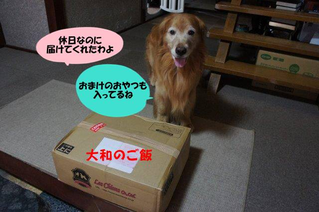 DSC02573.jpg