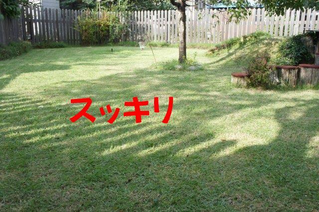 DSC03105_201609251712562d9.jpg