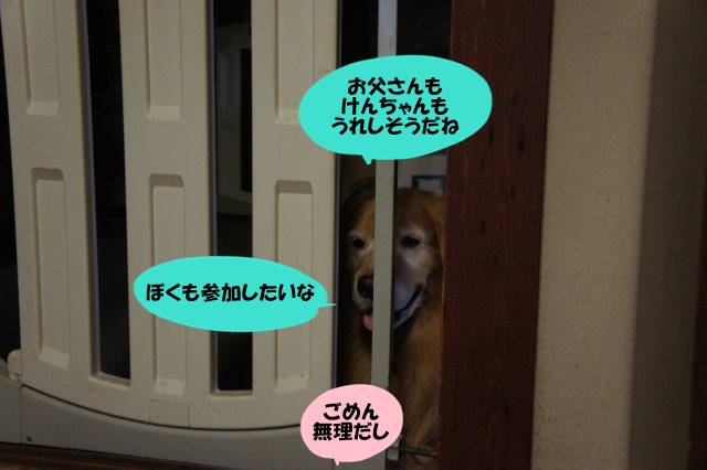 DSC03221_2016100519192440e.jpg
