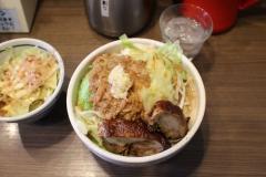161223鶏鶏misoイノジ_R