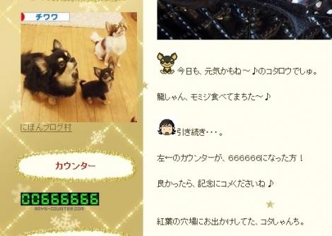kotarocount.jpg