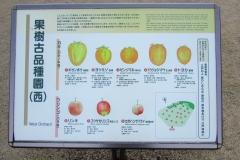 higashigyoen161225-202.jpg
