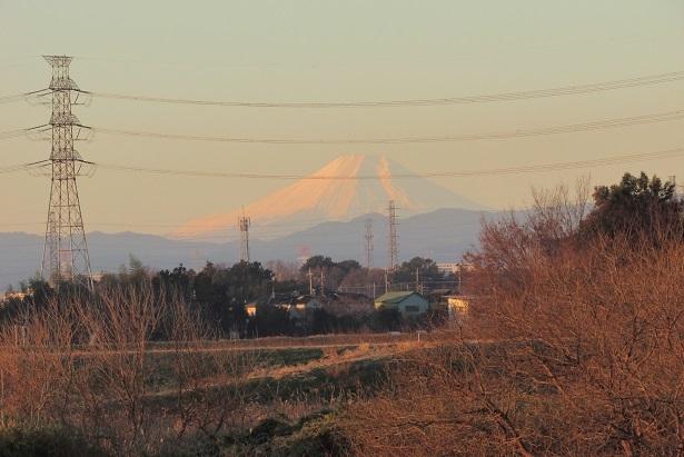 kawazima161218-113.jpg