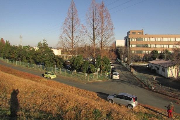 kawazima161218-117.jpg