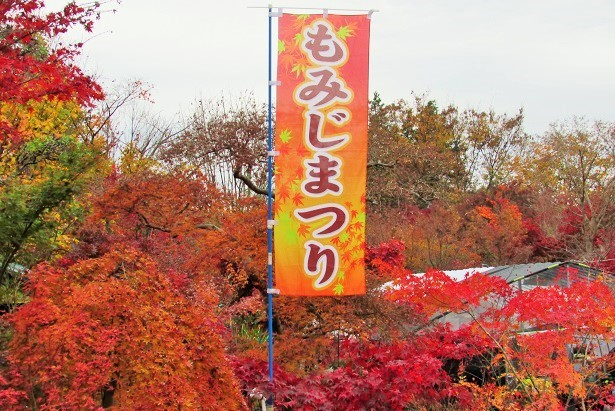 kobayashi161123-108.jpg