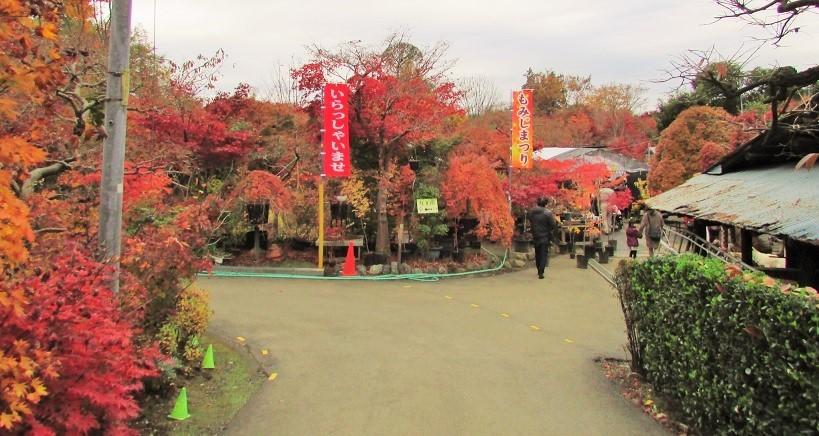 kobayashi161123-110.jpg