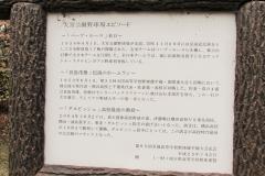 oomiya161127-201.jpg