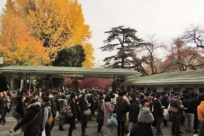 shinzyuku061204-105.jpg