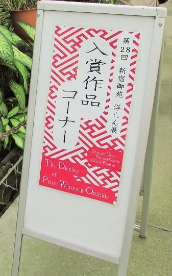 shinzyuku061204-118.jpg