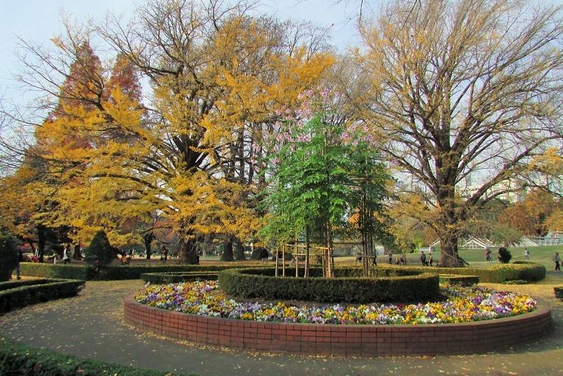 shinzyuku061204-121.jpg