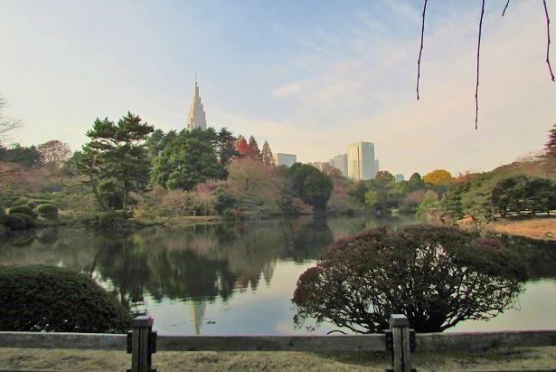 shinzyuku061204-132.jpg
