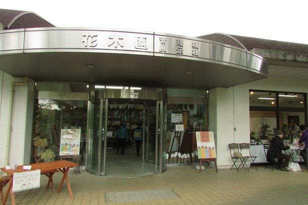 shouwa161030-124.jpg
