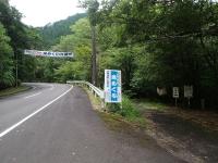 P7170001d.jpg