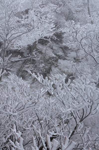 3寒風山16.12.24