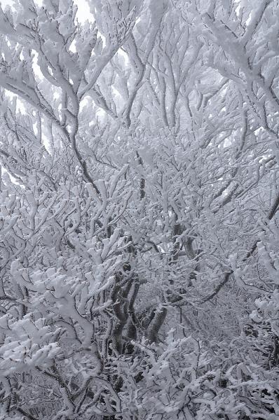 4寒風山16.12.24
