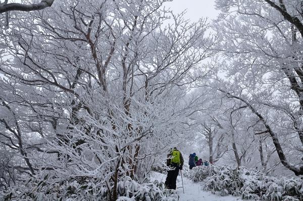5寒風山16.12.24